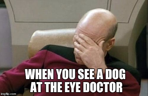 Captain Picard Facepalm Meme | WHEN YOU SEE A DOG AT THE EYE DOCTOR | image tagged in memes,captain picard facepalm | made w/ Imgflip meme maker