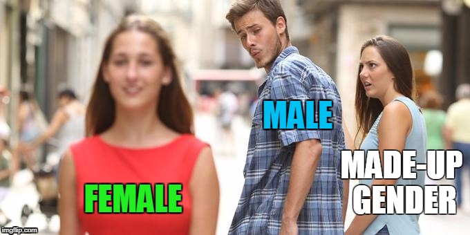 Distracted Boyfriend Meme | MALE FEMALE MADE-UP GENDER | image tagged in man looking at other woman | made w/ Imgflip meme maker