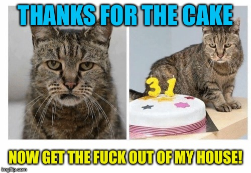 Worlds Oldest Cat | THANKS FOR THE CAKE NOW GET THE F**K OUT OF MY HOUSE! | image tagged in memes,worlds oldest cat | made w/ Imgflip meme maker