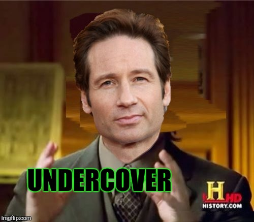 Fox Aliens | UNDERCOVER | image tagged in fox aliens | made w/ Imgflip meme maker