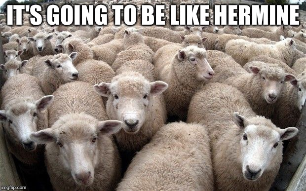 sheeple | IT'S GOING TO BE LIKE HERMINE | image tagged in sheeple | made w/ Imgflip meme maker