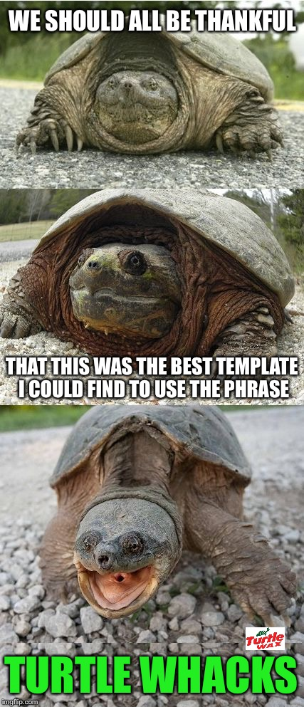 Bad Pun Tortoise | WE SHOULD ALL BE THANKFUL TURTLE WHACKS THAT THIS WAS THE BEST TEMPLATE I COULD FIND TO USE THE PHRASE | image tagged in bad pun tortoise,memes,funny,bad puns | made w/ Imgflip meme maker