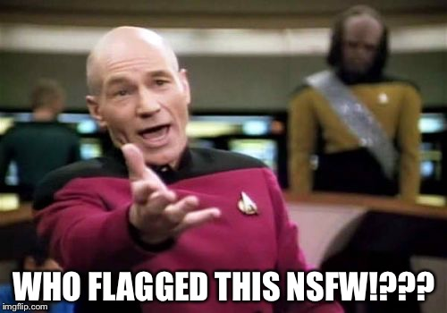 Picard Wtf Meme | WHO FLAGGED THIS NSFW!??? | image tagged in memes,picard wtf | made w/ Imgflip meme maker