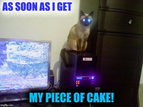 Internet Cat | AS SOON AS I GET MY PIECE OF CAKE! | image tagged in internet cat | made w/ Imgflip meme maker