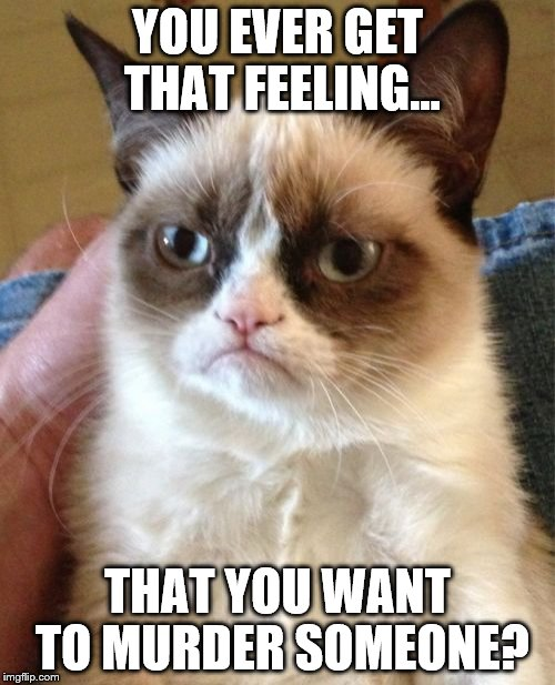 Grumpy Cat Meme | YOU EVER GET THAT FEELING... THAT YOU WANT TO MURDER SOMEONE? | image tagged in memes,grumpy cat | made w/ Imgflip meme maker