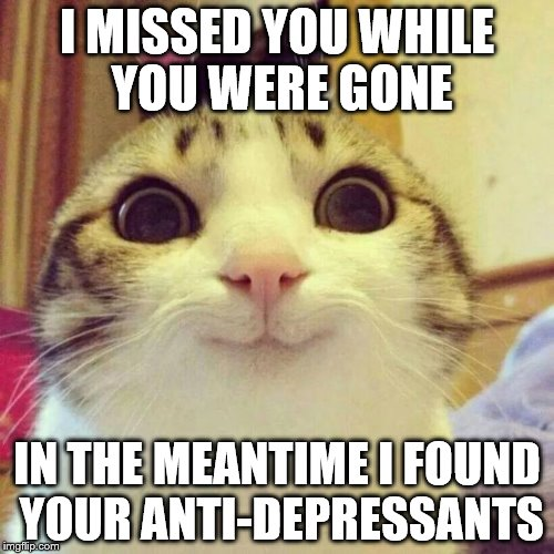 Smiling Cat Meme | I MISSED YOU WHILE YOU WERE GONE IN THE MEANTIME I FOUND YOUR ANTI-DEPRESSANTS | image tagged in memes,smiling cat | made w/ Imgflip meme maker