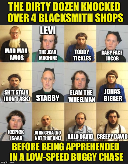 Amish Wanted Poster | MAD MAN AMOS LEVI THE JEAN MACHINE TODDY TICKLES BABY FACE JACOB SH*T STAIN (DON'T ASK) STABBY ELAM THE WHEELMAN JONAS BIEBER ICEPICK ISAAC  | image tagged in amish,wanted,poster,robbery,armed robbery,police | made w/ Imgflip meme maker