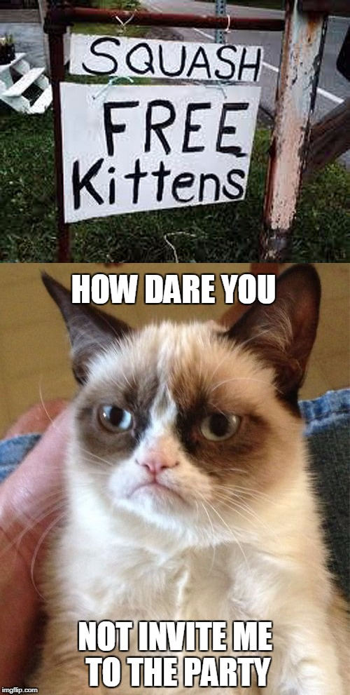 Squash all the kitties | HOW DARE YOU NOT INVITE ME TO THE PARTY | image tagged in memes,grumpy cat,squash the kittens | made w/ Imgflip meme maker