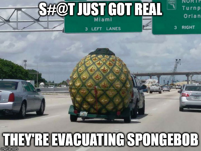 S#@t just got real... | S#@T JUST GOT REAL THEY'RE EVACUATING SPONGEBOB | image tagged in spongebob,hurricane irma | made w/ Imgflip meme maker