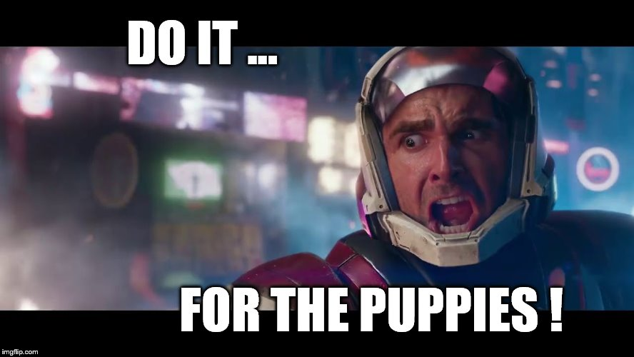 DO IT ... FOR THE PUPPIES ! | image tagged in do it for the puppies,destiny,destiny2 | made w/ Imgflip meme maker
