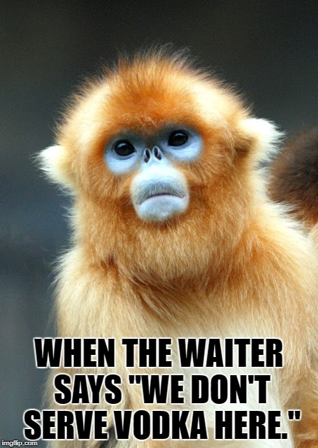 "No Vodka? | WHEN THE WAITER SAYS ""WE DON'T SERVE VODKA HERE."" 