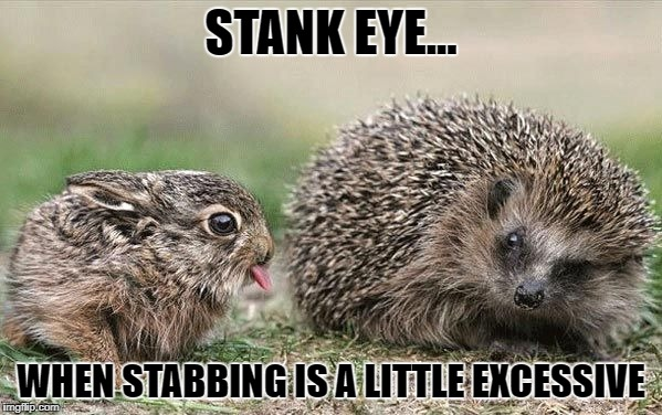 Stank Eye | STANK EYE... WHEN STABBING IS A LITTLE EXCESSIVE | image tagged in annoying,stank eye,irritating,jail's not worth it,irritating friends,sibling rivalry | made w/ Imgflip meme maker