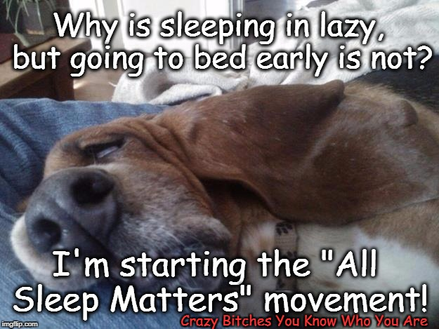 "Why is sleeping in lazy, but going to bed early is not? Crazy B**ches You Know Who You Are I'm starting the ""All Sleep Matters"" movement! 