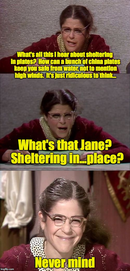 Emily, Meet Irma | What's all this I hear about sheltering in plates?  How can a bunch of china plates keep you safe from water, not to mention high winds.  It | image tagged in bad pun gilda radner playing emily litella,hurricane irma | made w/ Imgflip meme maker