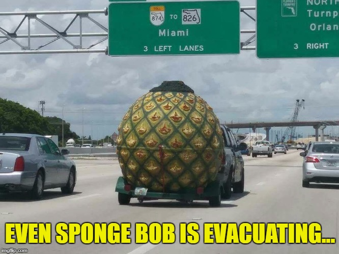 EVEN SPONGE BOB IS EVACUATING... | image tagged in spongebob | made w/ Imgflip meme maker
