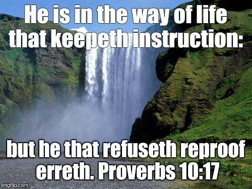 True | He is in the way of life that keepeth instruction: but he that refuseth reproof erreth. Proverbs 10:17 | image tagged in advice god | made w/ Imgflip meme maker