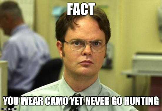 Dwight Schrute Meme | FACT YOU WEAR CAMO YET NEVER GO HUNTING | image tagged in memes,dwight schrute | made w/ Imgflip meme maker