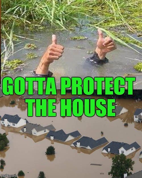 GOTTA PROTECT THE HOUSE | made w/ Imgflip meme maker