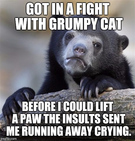 BEWARE THE GRUMP :D | GOT IN A FIGHT WITH GRUMPY CAT BEFORE I COULD LIFT A PAW THE INSULTS SENT ME RUNNING AWAY CRYING. | image tagged in funny,confession bear,animals,cats,memes,grumpy cat | made w/ Imgflip meme maker