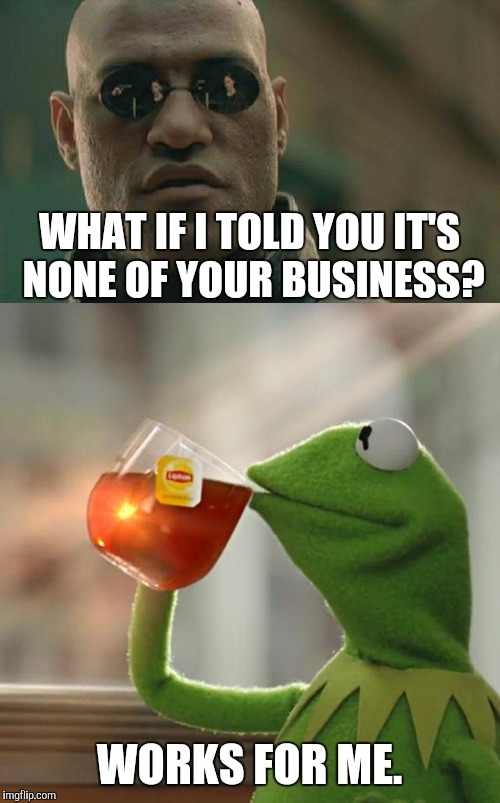 THAT SEEMED TO WORK OUT :D | WHAT IF I TOLD YOU IT'S NONE OF YOUR BUSINESS? WORKS FOR ME. | image tagged in funny,matrix morpheus,animals,humor,memes,but thats none of my business | made w/ Imgflip meme maker