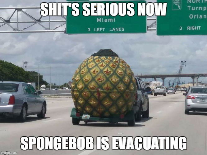 Spongebob is leaving..shit just got serious | SHIT'S SERIOUS NOW SPONGEBOB IS EVACUATING | image tagged in spongebob,irma | made w/ Imgflip meme maker