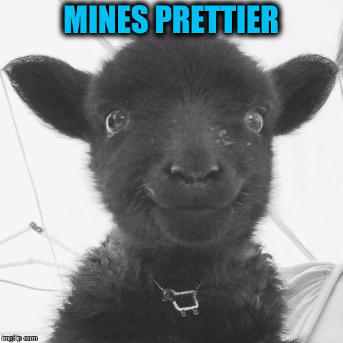 MINES PRETTIER | made w/ Imgflip meme maker