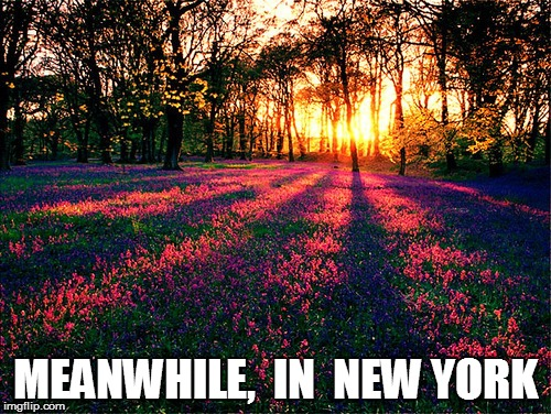 MEANWHILE,  IN  NEW YORK | made w/ Imgflip meme maker