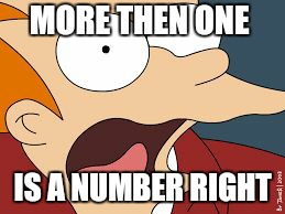 fry screaming  | MORE THEN ONE IS A NUMBER RIGHT | image tagged in fry screaming | made w/ Imgflip meme maker