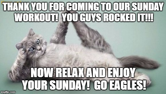 THANK YOU FOR COMING TO OUR SUNDAY WORKOUT!  YOU GUYS ROCKED IT!!! NOW RELAX AND ENJOY YOUR SUNDAY!  GO EAGLES! | image tagged in exercising cat | made w/ Imgflip meme maker