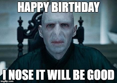 Lord Voldemort | HAPPY BIRTHDAY I NOSE IT WILL BE GOOD | image tagged in lord voldemort | made w/ Imgflip meme maker