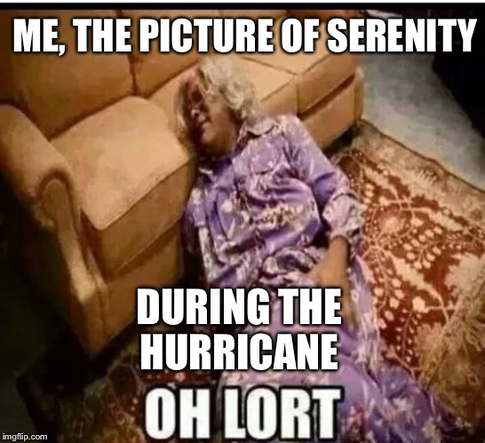 Madea snow  | ME, THE PICTURE OF SERENITY DURING THE HURRICANE | image tagged in madea snow | made w/ Imgflip meme maker