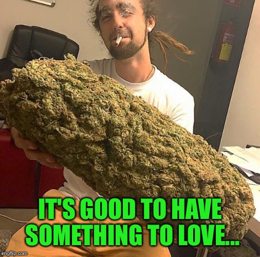 Big bud! | IT'S GOOD TO HAVE SOMETHING TO LOVE... | image tagged in big bud | made w/ Imgflip meme maker