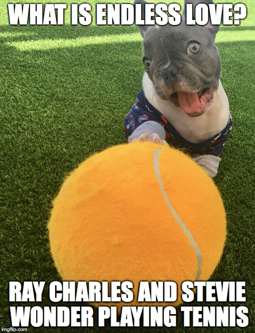 WHAT IS ENDLESS LOVE? RAY CHARLES AND STEVIE WONDER PLAYING TENNIS | image tagged in silly bleu tennis ball | made w/ Imgflip meme maker