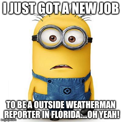 Minions | I JUST GOT A NEW JOB TO BE A OUTSIDE WEATHERMAN REPORTER IN FLORIDA....OH YEAH! | image tagged in minions | made w/ Imgflip meme maker