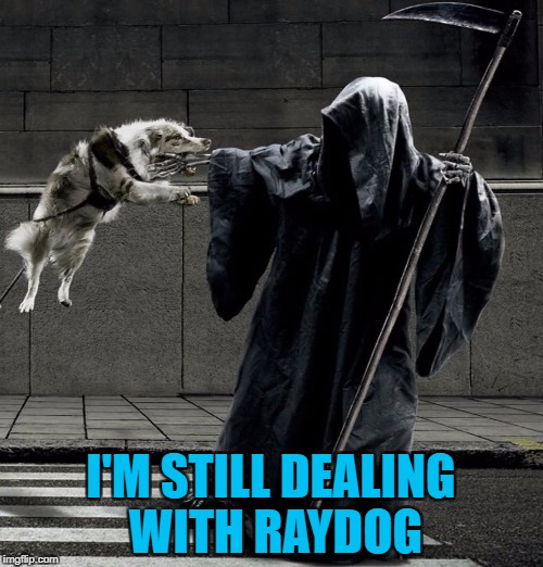 I'M STILL DEALING WITH RAYDOG | made w/ Imgflip meme maker