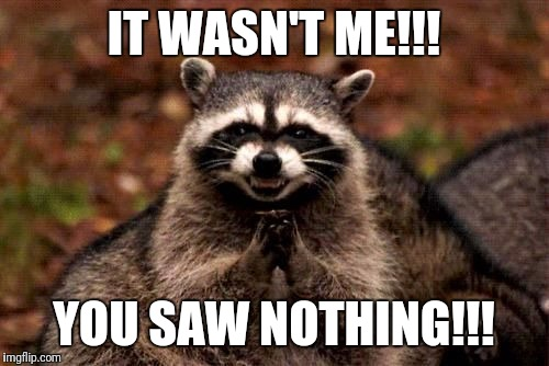 IT WASN'T ME!!! YOU SAW NOTHING!!! | image tagged in evil raccoon blank | made w/ Imgflip meme maker