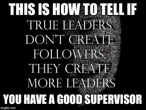 Leadership | THIS IS HOW TO TELL IF YOU HAVE A GOOD SUPERVISOR | image tagged in leader | made w/ Imgflip meme maker