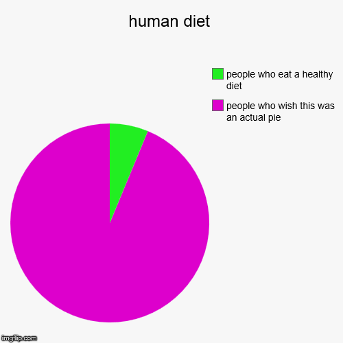 human diet | people who wish this was an actual pie, people who eat a healthy diet | image tagged in funny,pie charts | made w/ Imgflip pie chart maker