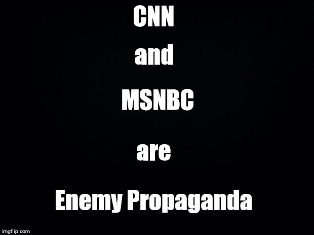 The truth | CNN Enemy Propaganda and MSNBC are | image tagged in black background,meme,cnn,fake news,msnbc,enemy of usa | made w/ Imgflip meme maker