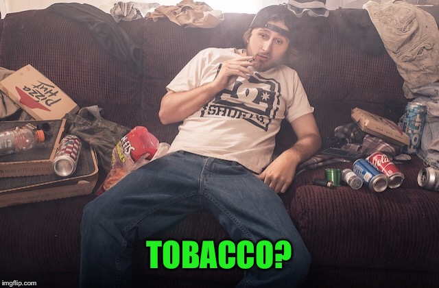 Stoner on couch | TOBACCO? | image tagged in stoner on couch | made w/ Imgflip meme maker