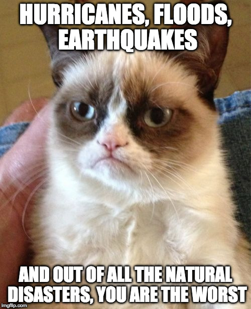 Grumpy Cat Meme | HURRICANES, FLOODS, EARTHQUAKES AND OUT OF ALL THE NATURAL DISASTERS, YOU ARE THE WORST | image tagged in memes,grumpy cat,natural disasters,hurricane harvey,hurricane irma,earthquake | made w/ Imgflip meme maker