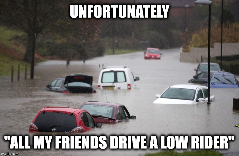 "UNFORTUNATELY ""ALL MY FRIENDS DRIVE A LOW RIDER"" 