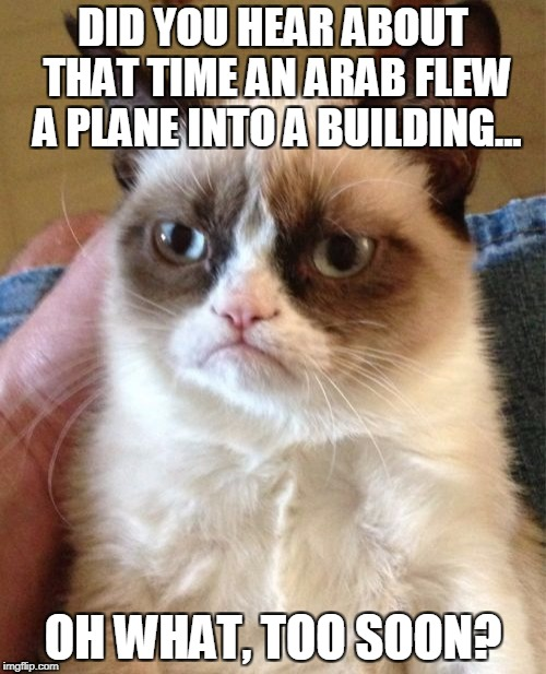 Grumpy Cat Meme | DID YOU HEAR ABOUT THAT TIME AN ARAB FLEW A PLANE INTO A BUILDING... OH WHAT, TOO SOON? | image tagged in memes,grumpy cat | made w/ Imgflip meme maker
