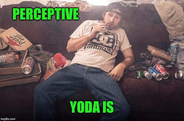 Stoner on couch | PERCEPTIVE YODA IS | image tagged in stoner on couch | made w/ Imgflip meme maker
