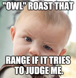 "Skeptical Baby Meme | ""OWL"" ROAST THAT RANGE IF IT TRIES TO JUDGE ME. 