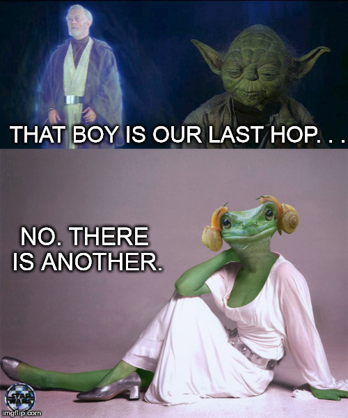 THAT BOY IS OUR LAST HOP. . . NO. THERE IS ANOTHER. | made w/ Imgflip meme maker