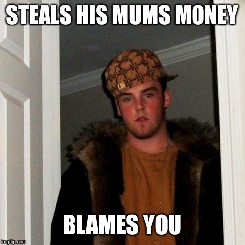 Scumbag Steve Meme | STEALS HIS MUMS MONEY BLAMES YOU | image tagged in memes,scumbag steve | made w/ Imgflip meme maker