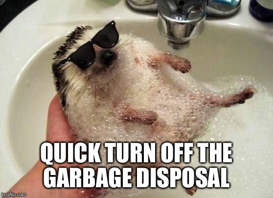 QUICK TURN OFF THE GARBAGE DISPOSAL | made w/ Imgflip meme maker