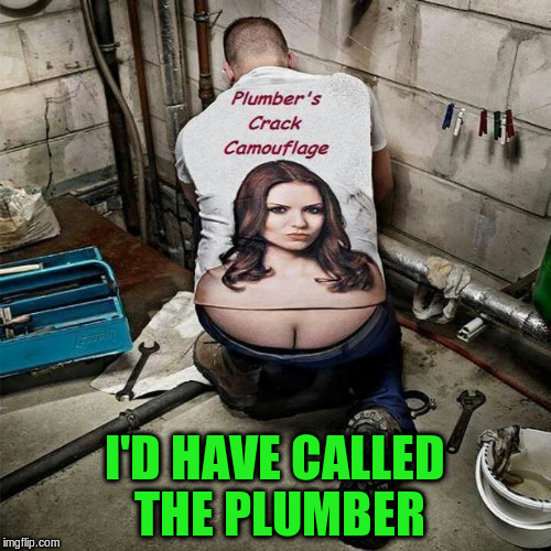 I'D HAVE CALLED THE PLUMBER | made w/ Imgflip meme maker