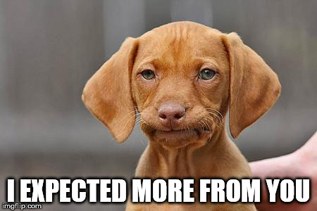 Dissapointed puppy | I EXPECTED MORE FROM YOU | image tagged in dissapointed puppy,AdviceAnimals | made w/ Imgflip meme maker